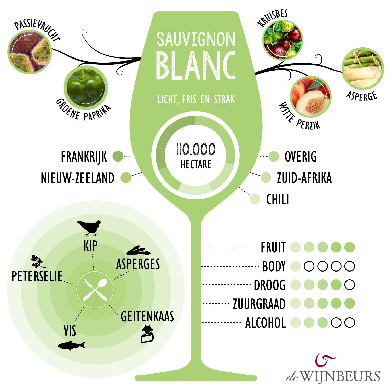 infographic-sauvignonblanc-1