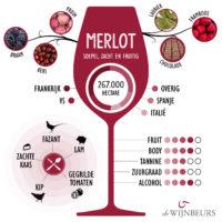 infographic-merlot