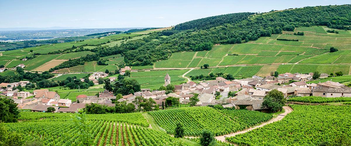 Bourgogne Frankrijk